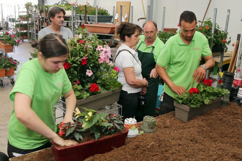 Visite horticulteur Schwartz - 06.jpg