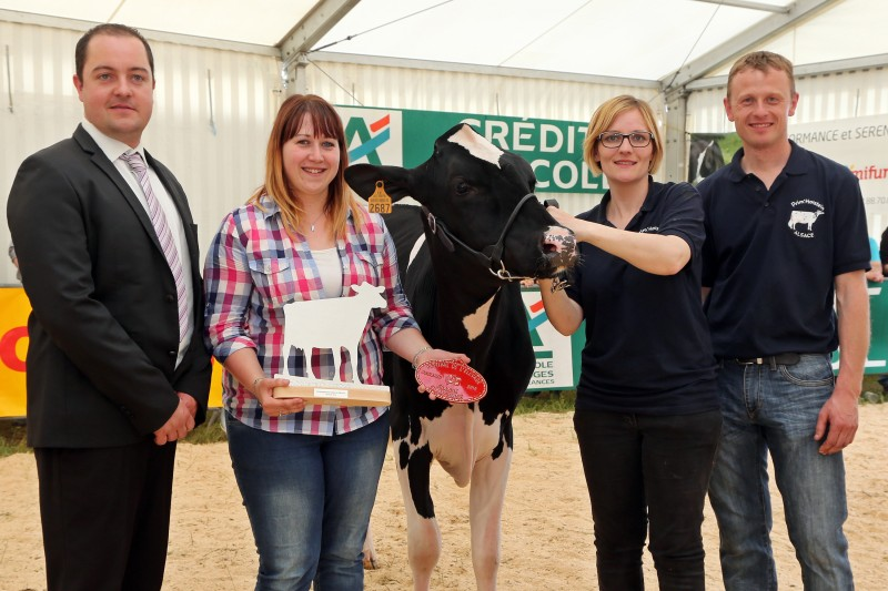 Festival de l'élevage - Prim-Holstein - Grande cha