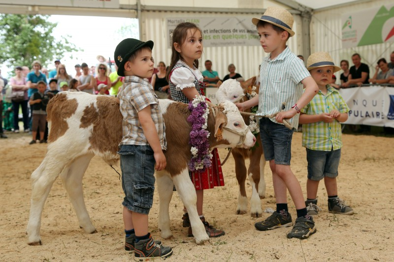 Festival de l'élevage - Enfants - 03.jpg