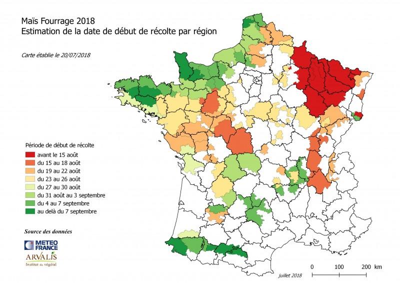 Maïs fourrage 2018-2.jpeg
