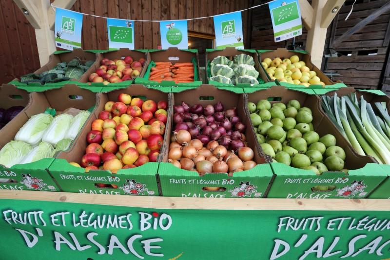 Fruits et légumes bio - 04.jpg