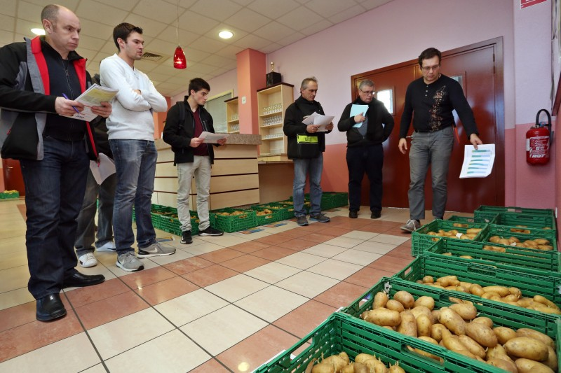Essais pommes de terre - 02.jpg