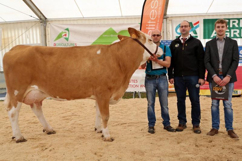 Festival de l'élevage 2019 - Concours simmental - Championne.jpg