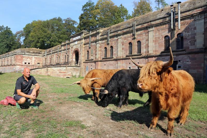 Fort Rapp - Highlands - 09.jpg