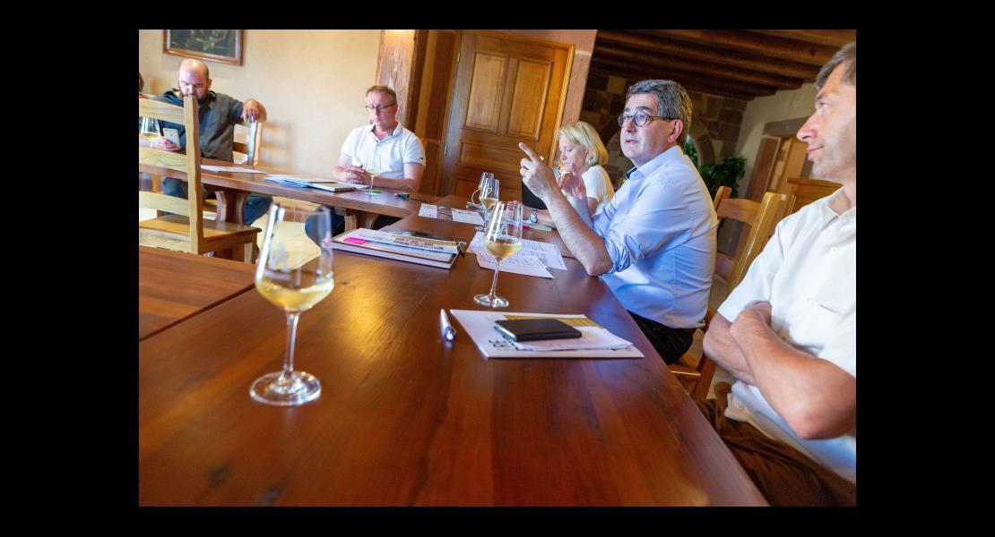 region-viticulture-covid_01.jpg