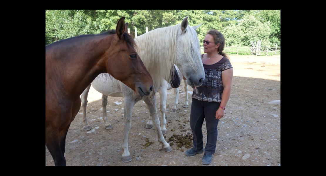 Kitty Lienhard Chuchotteuse chevaux 300620-7.JPG