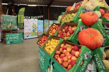Fruits et légumes bio - 08.jpg