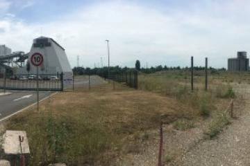 Projet-agricole-Eurometropole.JPG