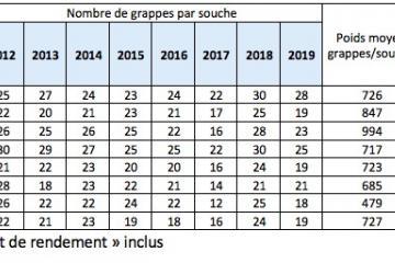 prévision rendement 2019