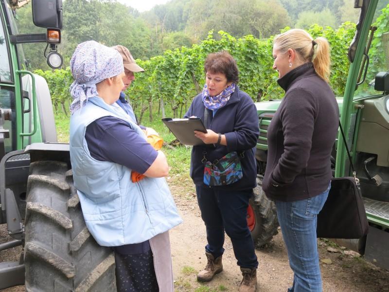 lutter contre les fraudes au travail d 233 tach 233 est agricole